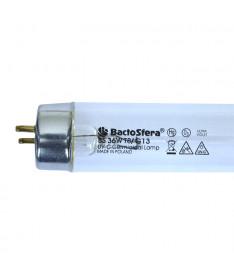 Бактерицидная лампа Philips TUV 36W (безозоновая)