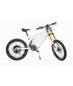 Электровелосипед Evel Enduro Stayer