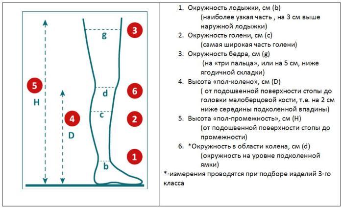 Подбор размера для компрессионного трикотажа